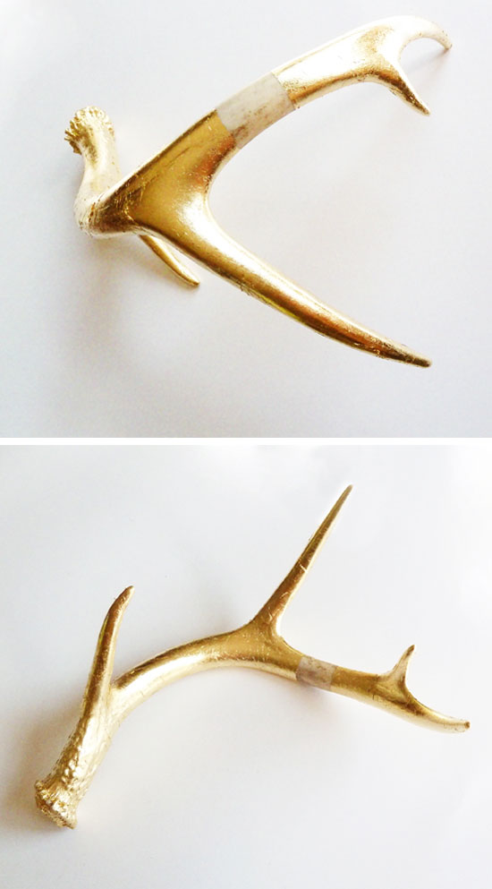 Golden_antler_1