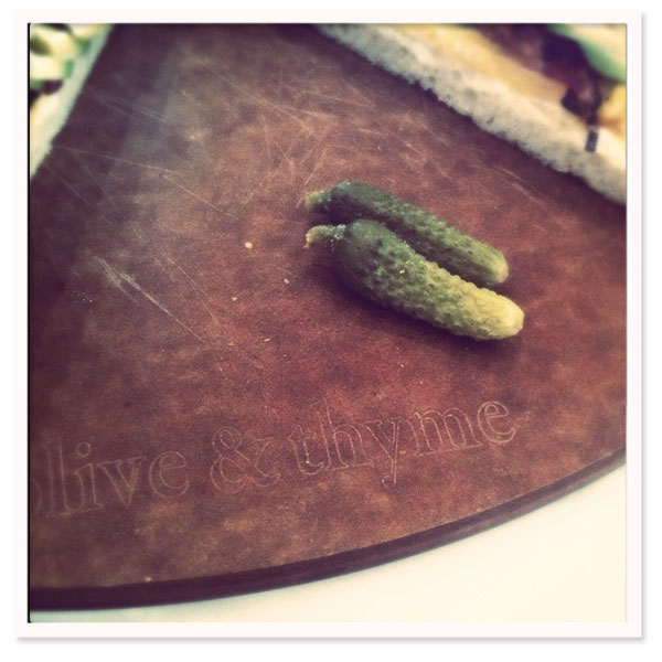 Olive_thyme_toluca_3