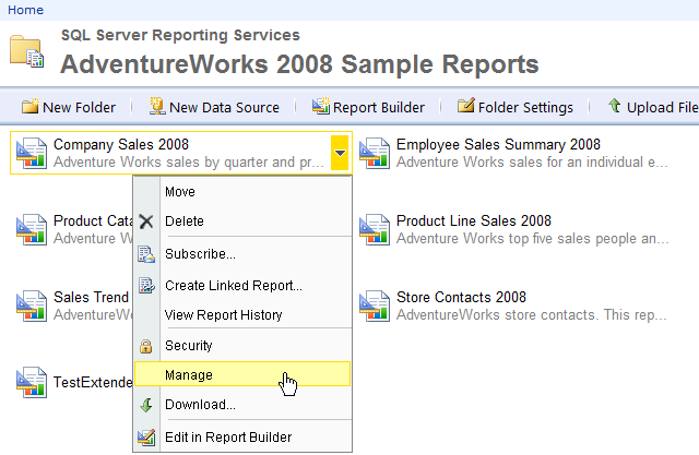 Property Settings Modified in Report Manager Are Not Part of