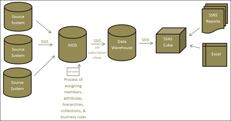 Resources for Learning Master Data Services — SQL Chick