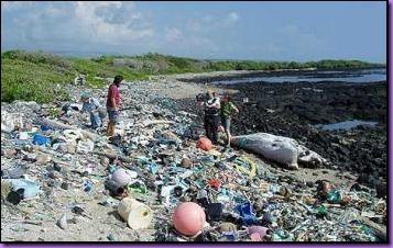 PlasticBeach