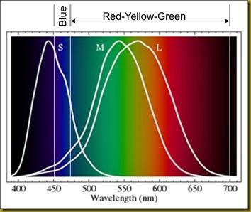 Seeing-RGB